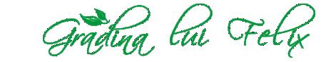 Gradina lui Felix Logo